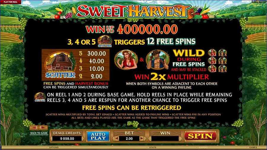 Sweet Harvest Free Spins Feature