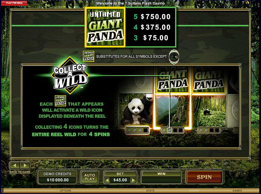 Untamed Giant Panda Collect Wild Feature