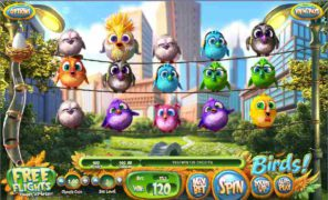 Birds Slots review