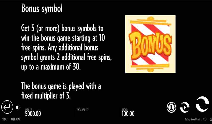 Bonus Symbol Feature