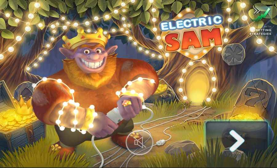 Electric Sam Screen